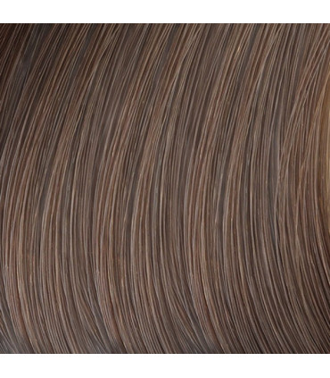 L'Oréal professionnel Majirel Absolu 50ml 5.3 Professionele haarkleuring - 2