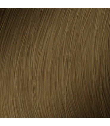 L'Oréal professionnel Majirel Absolu 50ml 7.31 Professionele haarkleuring - 2