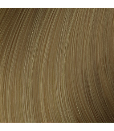 L'Oréal professionnel Majirel Absolu 50ml 8.31 Professionele haarkleuring - 2